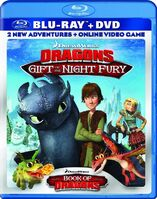 GiftOfTheNightFury Bluray