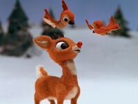 Rudolph-birds