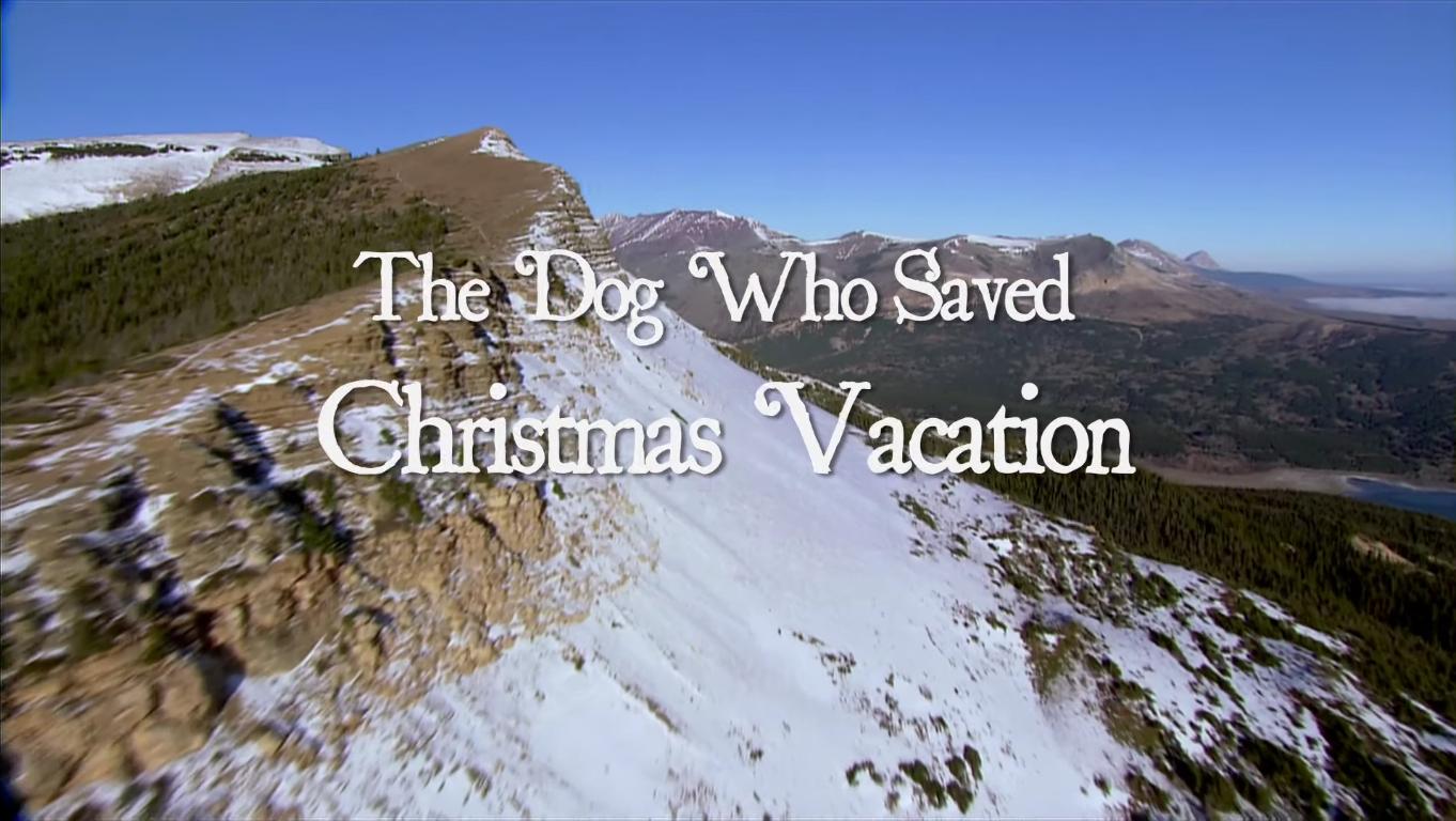 The Dog Who Saved Christmas.The Dog Who Saved Christmas Vacation Christmas Specials