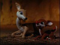 Rudolph Born