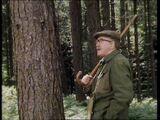 And a Dewhurst Up a Fir Tree