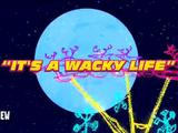 It's a Wacky Life