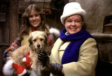 Benjis-very-own-christmas-story-1978-patsy-garrett-cynthia-smith-review