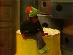Kermit on Sesame Street