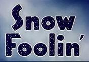 SnowFoolin