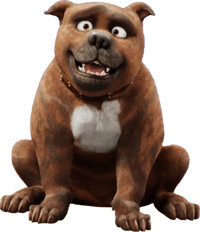 Rufus (The Star)
