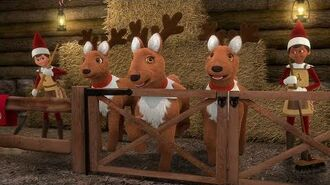 """Elf Pets Santa's Reindeer Rescue"" Official Trailer"