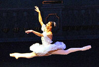 Nutcracker Ballet-Sugar Plum Fairy