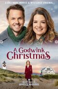 A Godwink Christmas poster