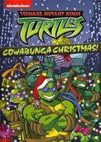 TMNT Cowabunga Christmas DVD