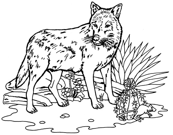 File:Wolf-coloring-pages-5.jpg