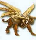 Criosphinx
