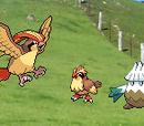 Pokemon Mystery Dungeon: Alpha Justice Team