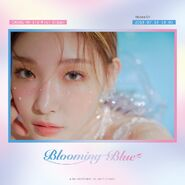 Chungha Blooming Blue Promo Picture (3)