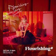 FlourishingTeaser2