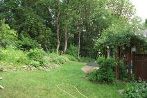 Chu's garden 3