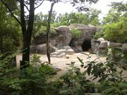 Sichuan takin cin zoo