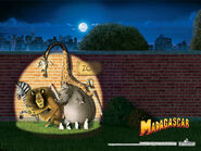 Wallpapers Madagascar 8