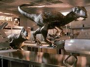 Jurassic-Park l