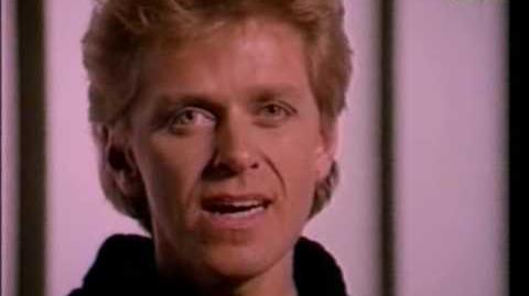 Peter Cetera ~ The Glory Of LOVE