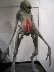 Alien- Resurrection - Newborn