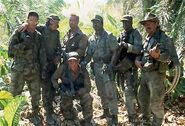The-platoon