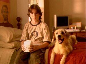 Sammy Kahn (Lenny the Wonder Dog)