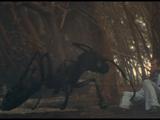 L'impero delle termiti giganti