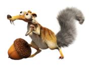 Scrat nut 2