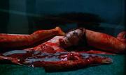 Cristina Contrelli's body parts minus a torso in Pieces