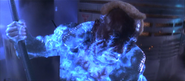 Phoenix's death