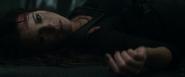 Lori's death (2012)