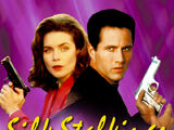 Silk Stalkings (1991 series)