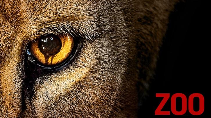 「zoo series」の画像検索結果