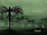 Salem (2014 series)