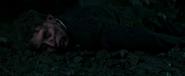 37th Dolan's death