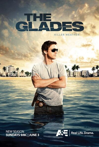 The Glades TV Series-841353270-large