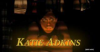 Katieadkins-toomanycooks1