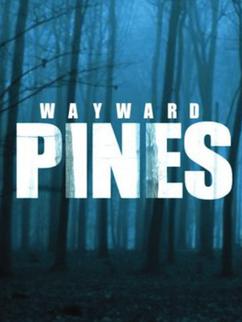 571393-wayward-pines2 430x573