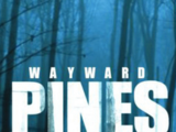 Wayward Pines (2015 series)