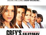 Grey's Anatomy (2005 series)