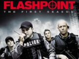 Flashpoint (2008 series)