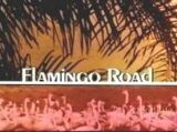 Flamingo Road (1980 series)