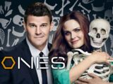 Bones (2005 series)