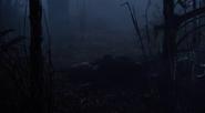 Leela Savasta Atlantis