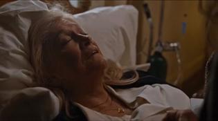 Diane Ladd in Joy