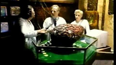 Christine Kossak * The Brain