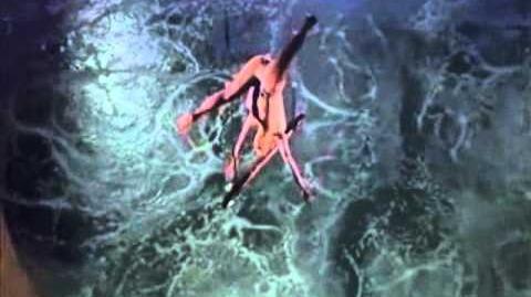 """Cirque du Soleil - """"O"""" Washington Trapeze"""