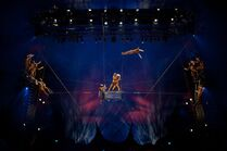 Flying Trapeze - OVO