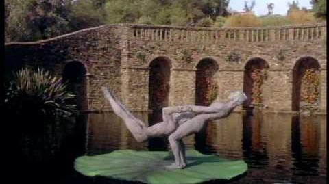 Cirque du Soleil Journey of Man Trailer